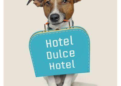 hotel dulce hotel